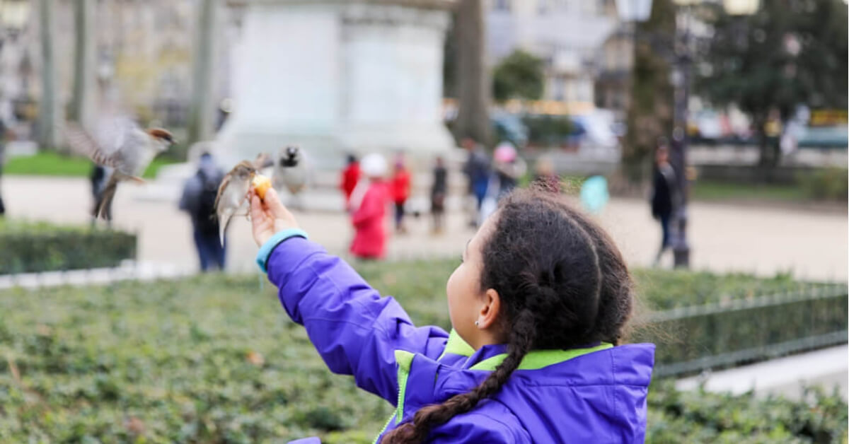 little girl wearing a purple coat feeding a bird in front of Notre Dame in Paris