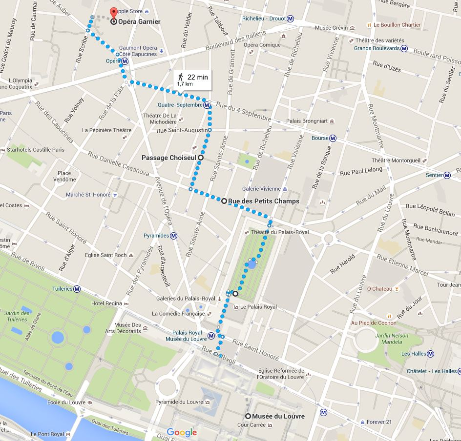 Map of Paris: this is the area around the Louvre where Emanuel suggests a great walk. Layover in Paris