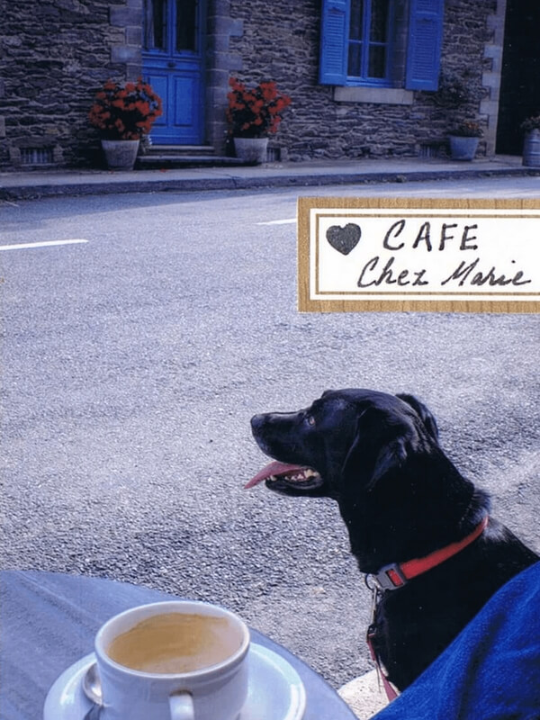 Claire and Tony's black labrador mix sitting patiently next to their table where they are enjoying a coffee