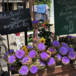 beautiful flowers at an open-air market in provence: smart way to visit provence episode